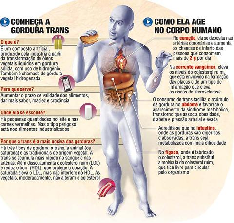 O-Que-São-Gordura-Trans - Cópia
